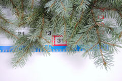 Eve of new year. Blue spruce branches removed close up against a calendar with date on December, 31st Royalty Free Stock Image
