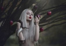 Eve with the serpent the tempter and the apple of sin. Young beautiful nude girl with very long white hair with a snake under the royalty free stock photography