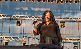 Evelyn Champagne King Royalty Free Stock Image