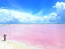 Even little girl can not resist the charming pink lagoon in Las Coloradas Yucatan Mexico. Stock Images
