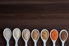 An even row of cereals in the same white dishes. Royalty Free Stock Images