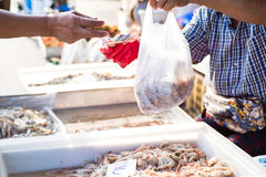 Even the shrimp trade. Stock Images