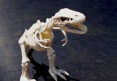 Free Even Tyrannosaurus Rex Toy Model Is Fierce Stock Image - 218873311