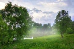 Evenin fog Stock Images