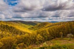 Evening światło na Blue Ridge Mountains widzieć w Shenandoah parku narodowym, Virginia. Zdjęcia Stock