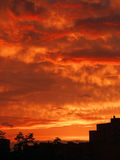 Evening. Red clouds Evening Royalty Free Stock Images