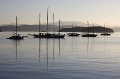 Evening Anchor. Sailboats anchored in a calm bay at the end of the day Royalty Free Stock Images