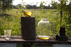 Evening the apiary Royalty Free Stock Photo