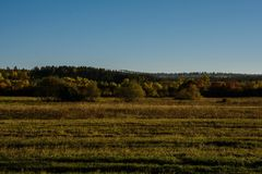 Evening in the autumn field Royalty Free Stock Image
