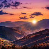 Evening Autumn Hillside With Red And Yellow Forest Royalty Free Stock Photo