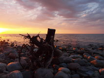 Evening on the Baltic Sea. Baltic Sea Coast Rozewie at sunset Stock Images