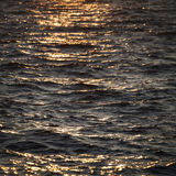 Evening on Baltic Sea Royalty Free Stock Images