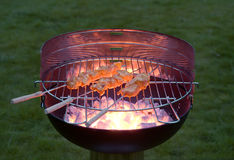 Evening barbecue Royalty Free Stock Photography