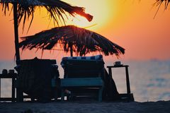 Evening Beach Stock Images