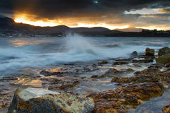 Evening beach Tasmania Royalty Free Stock Images