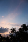 Evening on beautiful tropical beach Stock Images