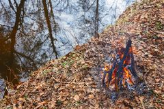 Evening bonfire on the bank of a forest stream.  stock images