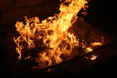 Evening bonfire. With yellow and orange flame Royalty Free Stock Photos