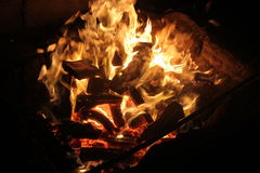 Evening bonfire. With yellow and orange flame royalty free stock photo