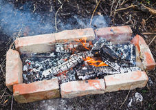 Evening burning bonfire with smoke Stock Image