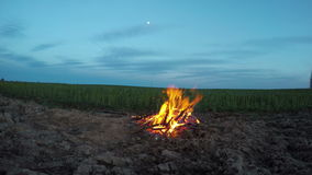 Evening campfire on field. Time lapse 4K stock footage
