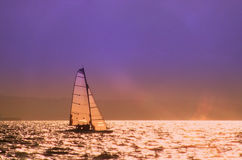 Evening Catamaran Stock Images