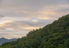 Evening chmurnieje z drzewną górą Obraz Royalty Free