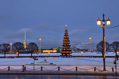 Evening city at New Year decorations, artificial Christmas fir t Royalty Free Stock Image