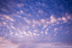 Evening cloud royalty free stock photography