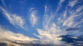 Evening clouds in deep blue sky. Beautiful cirrus clouds in the deep blue evening sky royalty free stock images