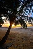 Evening coast Diani Stock Photo