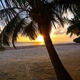 Evening coast Diani Stock Photos