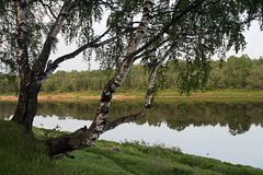 Evening on coast of Volga. Royalty Free Stock Photography
