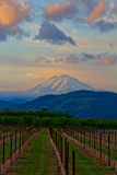 Evening Comes to Mount Adams Royalty Free Stock Image