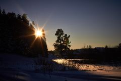 Evening in the dark forest, Christmas. Sun rays in the dark. New year, covered in snow. Spruce trees pine trees covered with snow.  Stock Photography