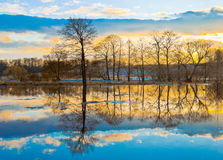 Evening dawn. Spring flood of the river Stock Photography