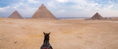 Evening desert and Giza pyramids with a horse on foreground, no tourists, near Cairo, Egypt. royalty free stock photos