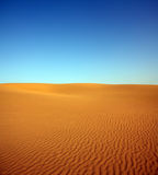 Evening desert landscape Royalty Free Stock Photo