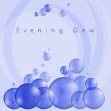 Evening Dew Stock Image