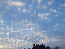 Evening. Enjoying the beautiful evening weather Stock Photos
