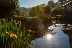 Evening at an Exmoor Pond royalty free stock photography