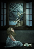 Evening fairy tale Royalty Free Stock Photo