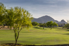 Evening falls over the Scottsdale Greenbelt Park and Camelback Mountain Royalty Free Stock Photography