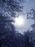 Evening fantastic light. Background for christmas card stock image