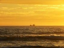 Evening fishing  Stock Photos