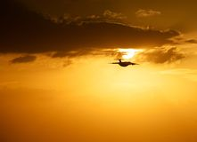 Evening flight Royalty Free Stock Photography