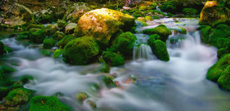 Evening flow. Cool water of the countryside brook Stock Photography