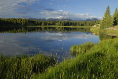 Evening at a forest lake in Colorado Stock Image