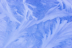 Evening frost pattern texture. Evening blue frost pattern texture on the glass Stock Images