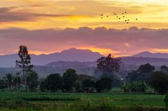In the evening, the golden sky, mountain views in Chiang Mai Thailand stock images